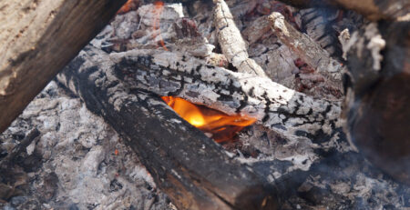 7 Reasons Why It Is Important To Know How To Build A Fire In The Wilderness
